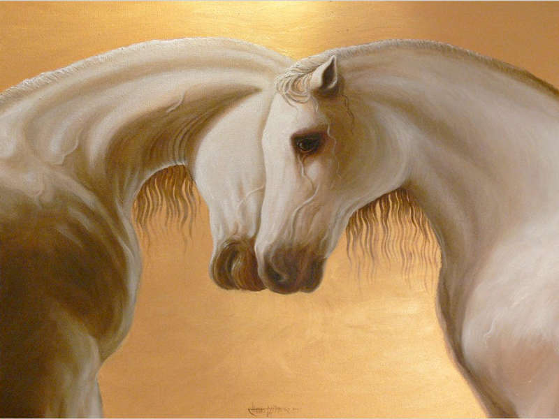 Lover Horses. Oil on canvas by Claudio Assandri. 1m.x1m.
